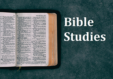 Picture of Bible representing studies